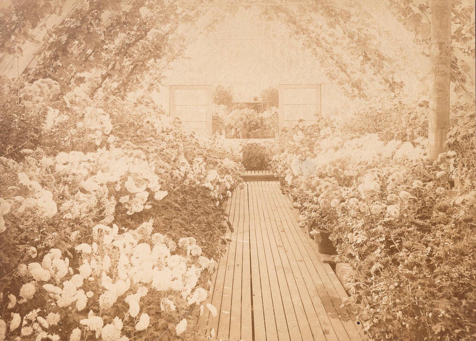 A sepia photo of a greenhouse.