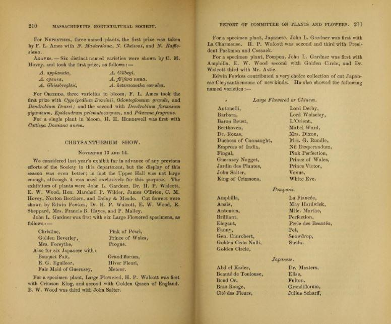 A photo of a book of transactions from 1884.