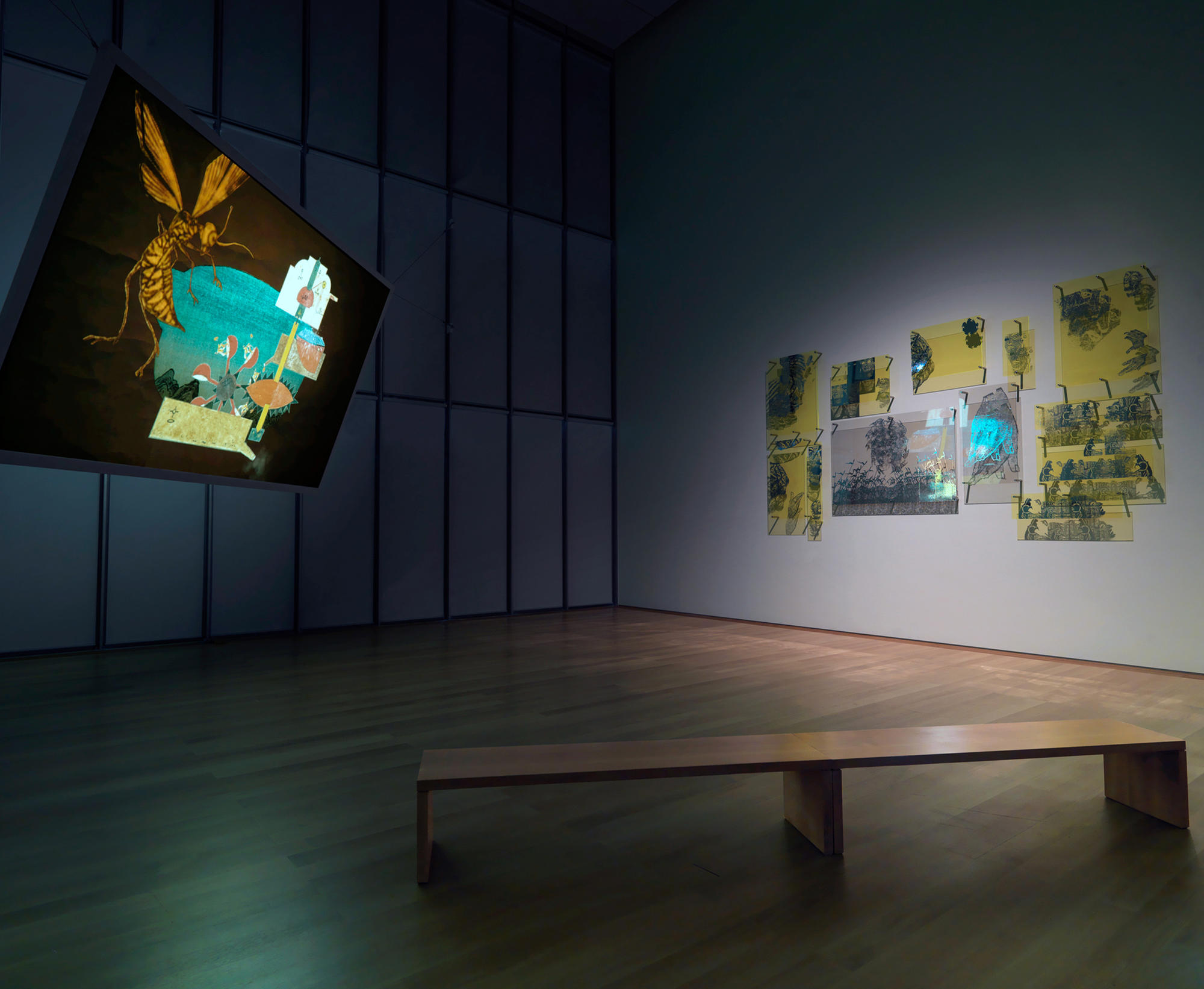 Raqs Media Collective: The Great Bare Mat and Constellation, Installation view of Archetypes and Other Permissive Forms and Equinox, Hostetter Gallery, 2012.