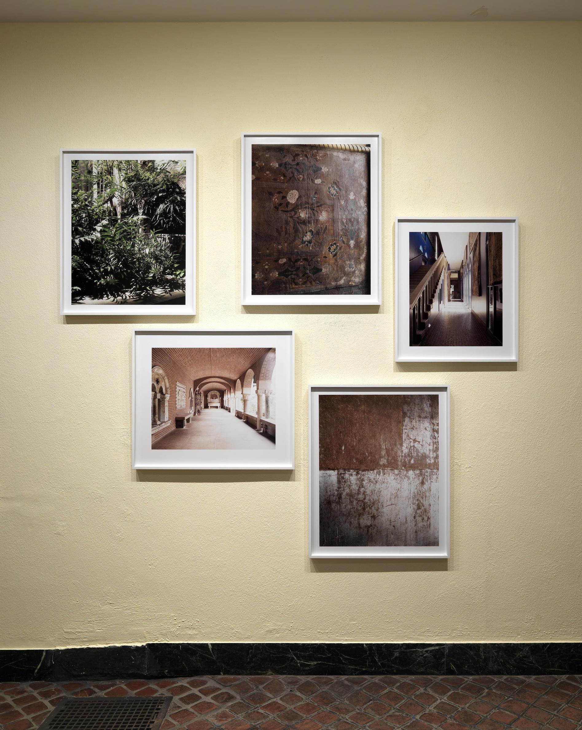 Luisa Lambri, Portrait, fall installation. September 11-October 15, 2012, Isabella Stewart Gardner Museum, Boston.